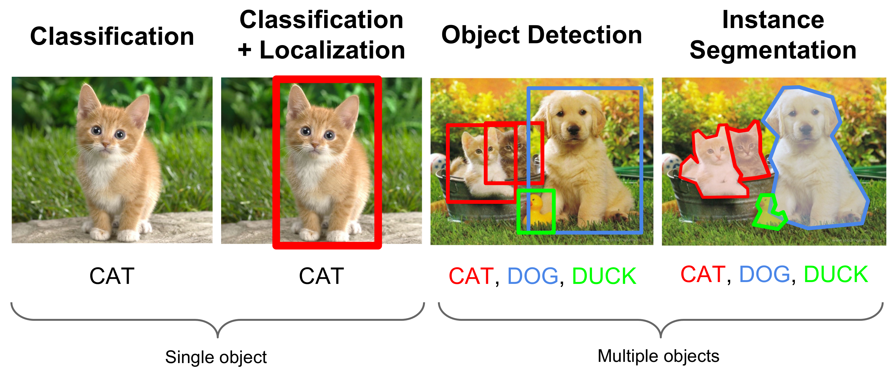 Difference between Classification, Localization, Detection and Segmentation